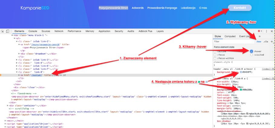zakładka CSS - możliwości
